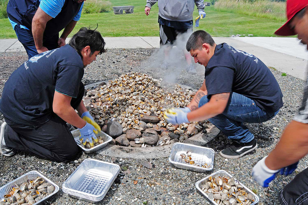 Muckleshoot community members prepare mussels over a traditional stone pit, which will then be shared during a community feast. Photo: Valerie Segrest.