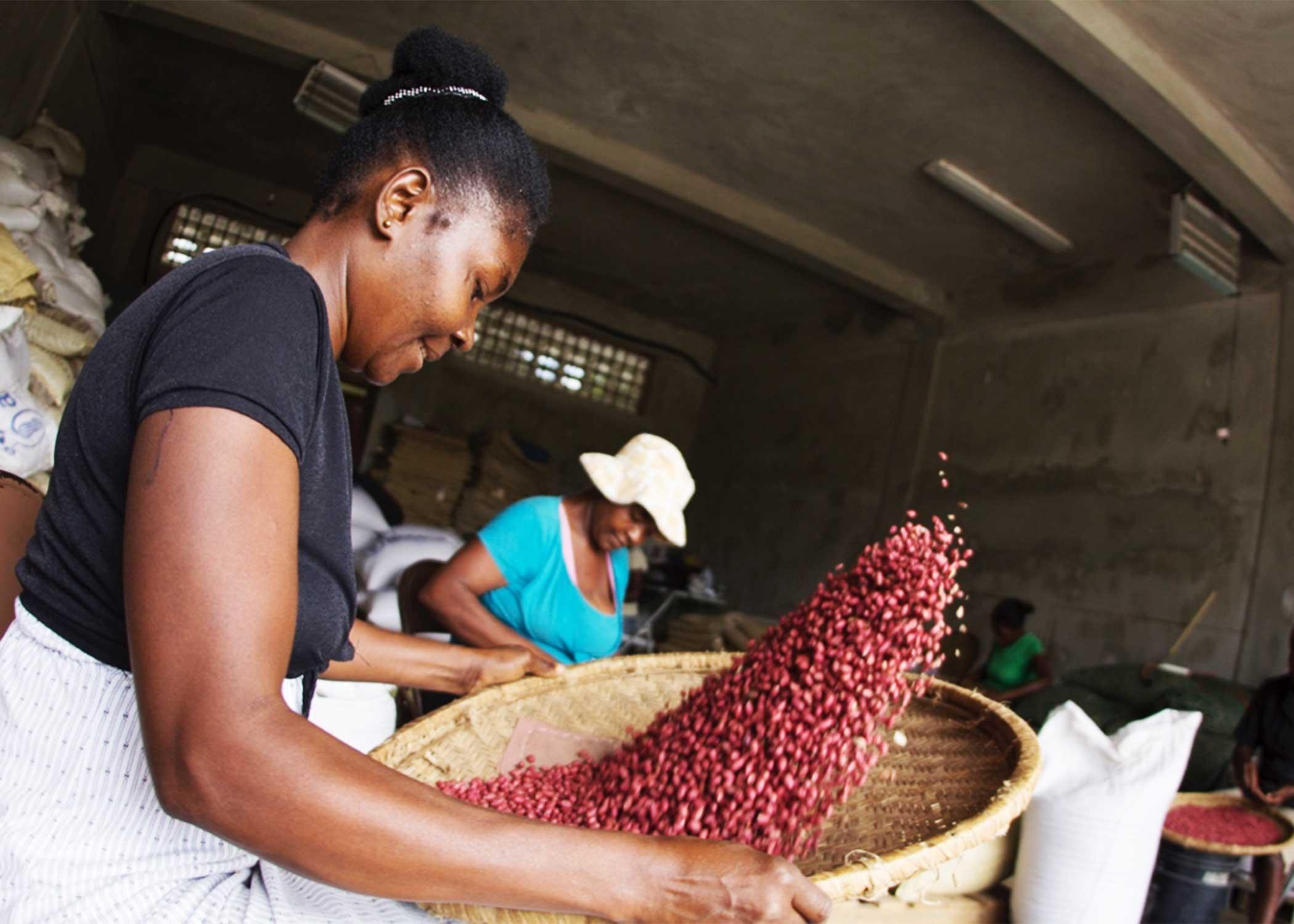 A Haitian women sifting peanuts.